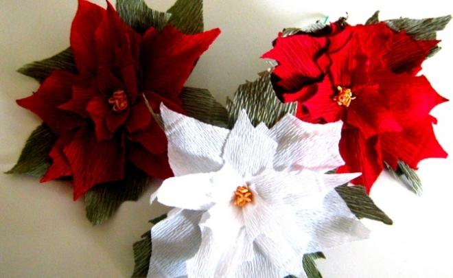 Izdelava božičnih zvezd v lončkih